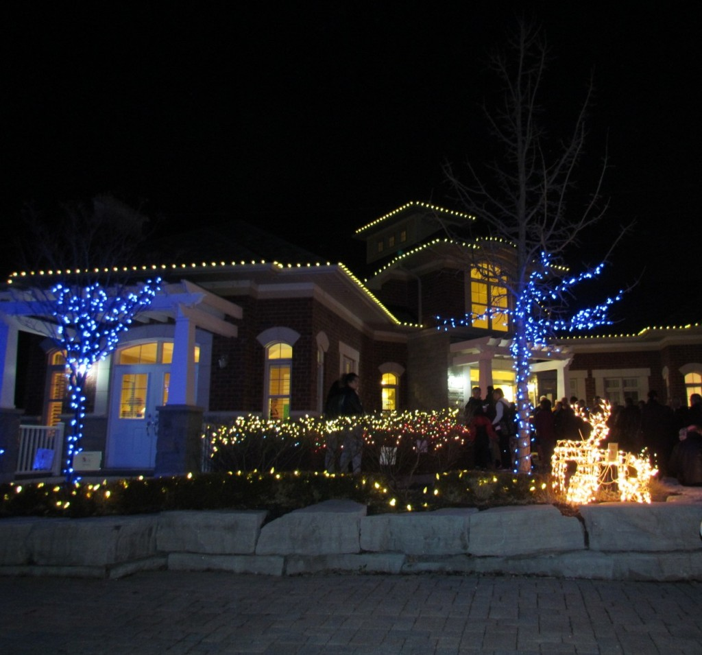 Chinguacousy Light Up 2016